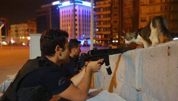 Кошка и вооруженные сотрудники полиции в Стамбуле, Турция
