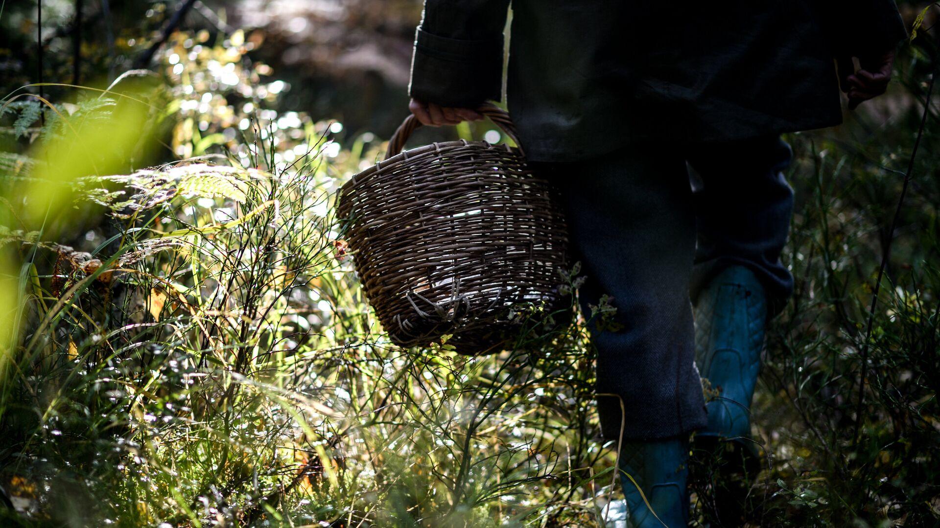 В Калужской области спасли грибника, заблудившегося в лесу