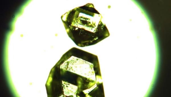 Кристаллы жемчужниковита, металл-органического вещества, найденного в угольных шахтах Сибири
