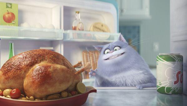 Кадр из мультфильма Тайная жизнь домашних животных. Архивное фото