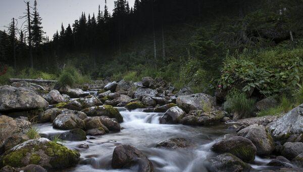 Река Осиновка в Байкальском Национальном заповеднике