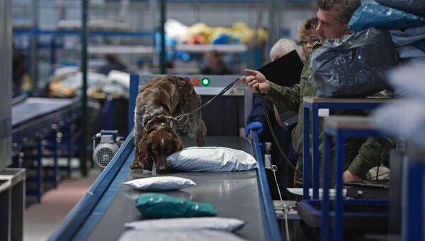 Сотрудник таможенной службы России проверяет посылки на наличие наркотических и сильнодействующих веществ. Архивное фото