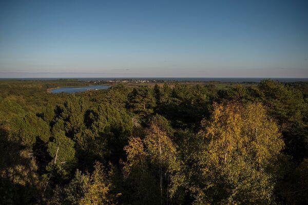Высота Мюллера в национальном парке Куршская коса