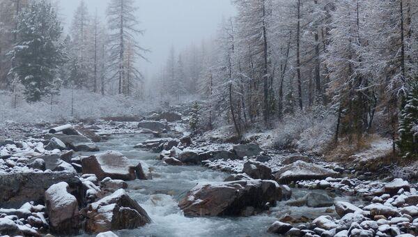Долина реки Актуру (Актру, Ак-Туру) в Республике Алтай