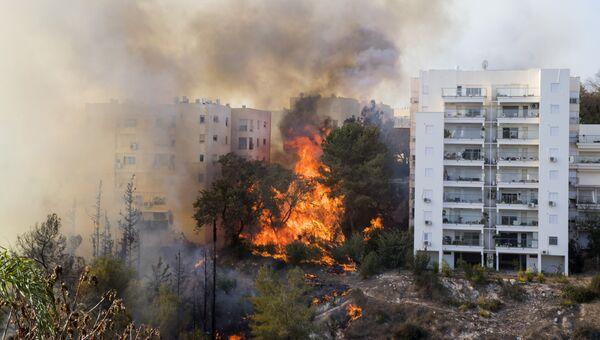 Пожар в городе Хайфа. Архивное фото
