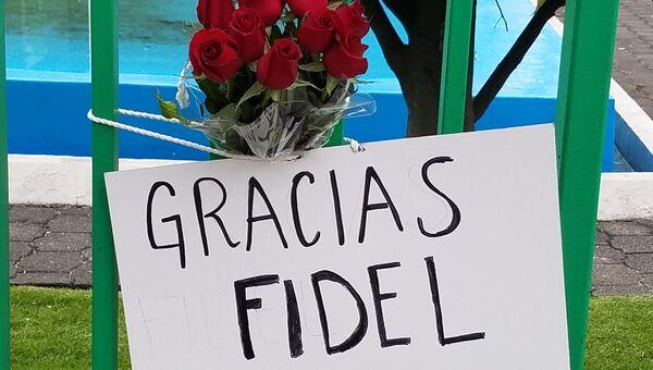 Цветы у посольства Кубы в Мехико после смерти Фиделя Кастро