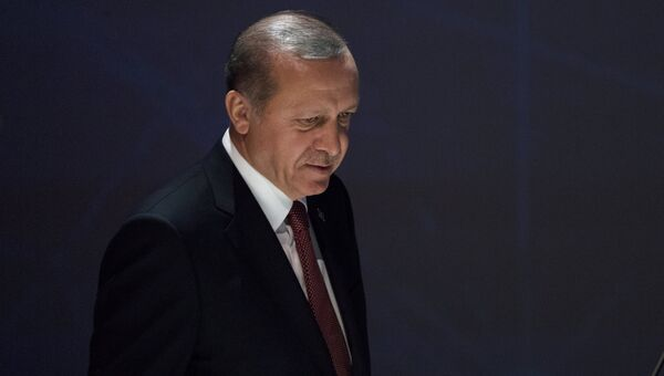 Президент Турции Реджеп Тайип Эрдоган в Стамбуле. Архивное фото