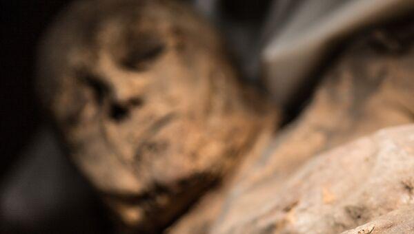 Мумия ребенка, рассказавшая ученым об истории рождения ветрянки