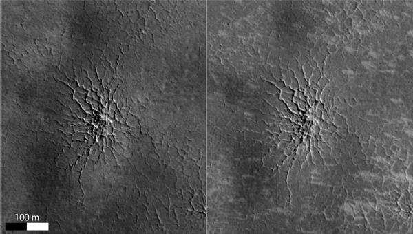Пауки на южном полюсе Марса