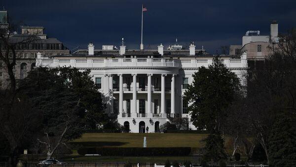 Вид на Белый дом в Вашингтоне. Архивное фото