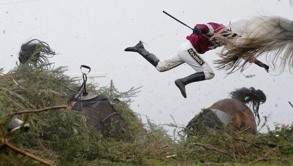 Grand National Steeplechase фотографа Tom Jenkins занявшего первое место в категории Спорт в фотоконкурсе World Press Photo