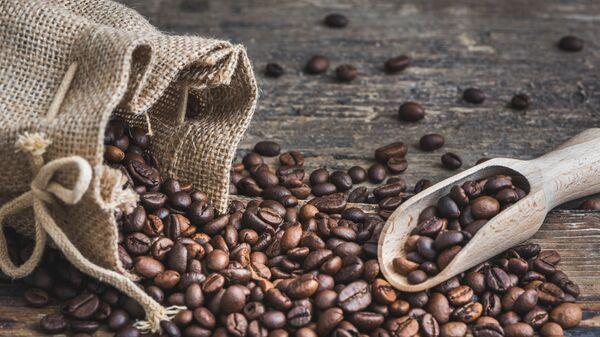 Зерна кофе вида робуста