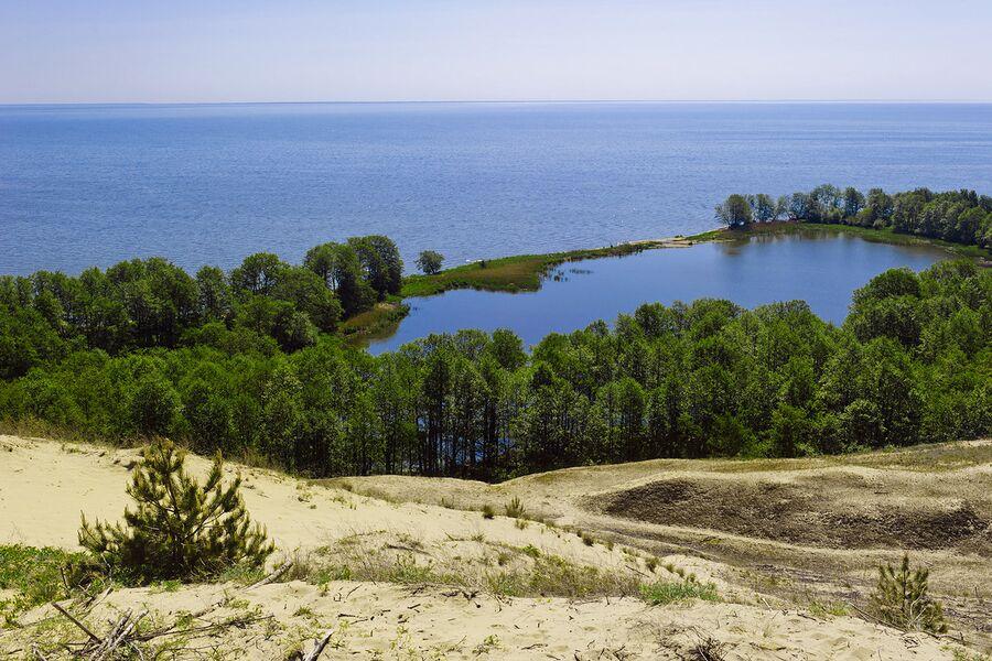 Национальный парк Куршская коса. Озеро Лебедь
