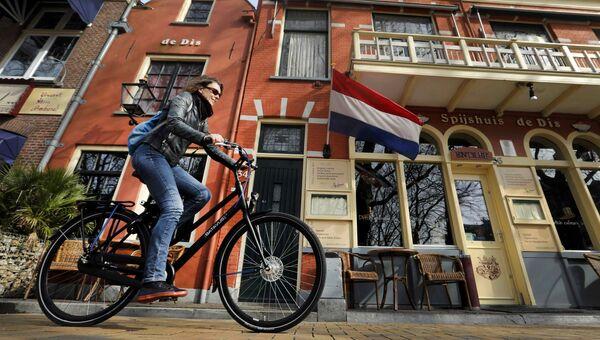 Нидерланды накануне парламентских выборов
