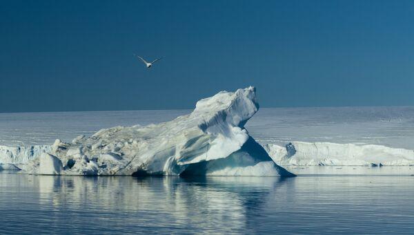 Арктика. Земля Франца-Иосифа.