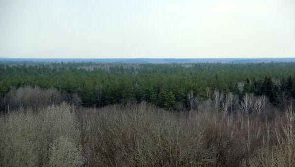 Волонтеры перевыполнили программу выходных в Брянском лесу