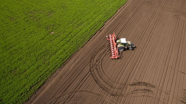 Кубанские аграрии получили более двух миллиардов рублей господдержки