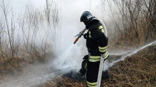 Лесной пожар. Архивное фото