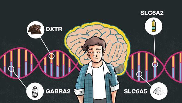 Гены OXTR, SLC6A2, GABRA2 и SLC6A5 дирижируют диетой человека