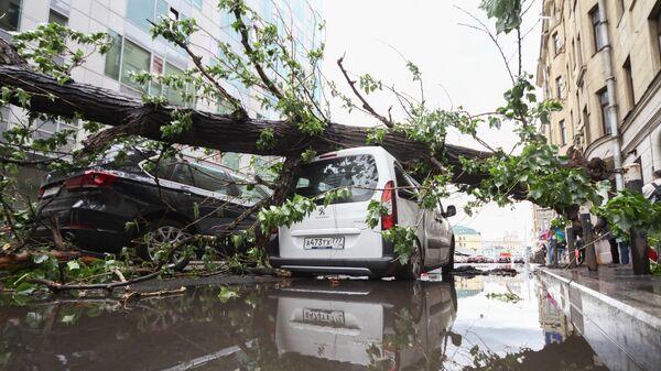 Последствия шквалистого ветра в Москве