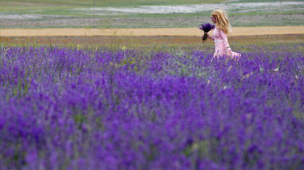 Женщина с букетом лаванды в окрестностях села Тургеневка Бахчисарайского района Крыма