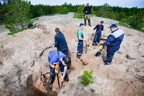 Внешние острова таят в себе загадки. Например, на Большом Тютерсе в дюнах были локализованы аномалии: выяснилось, что под несколькими метрами песка сохранились три зенитных орудия Flak-18.