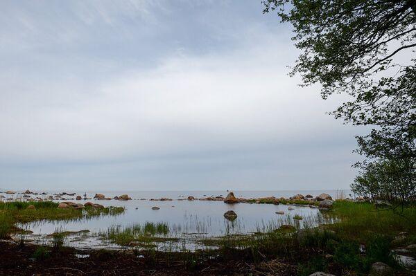 Около 10% площади острова – болота разных форм и характеристик