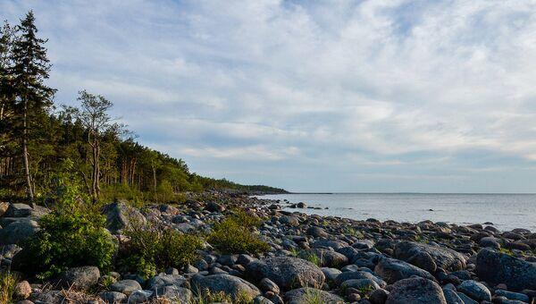 В новом статусе: часть внешних островов Финского залива стала заповедником