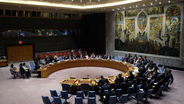 Заседание Совета Безопасности ООН в Нью-Йорке. 5 июля 2017