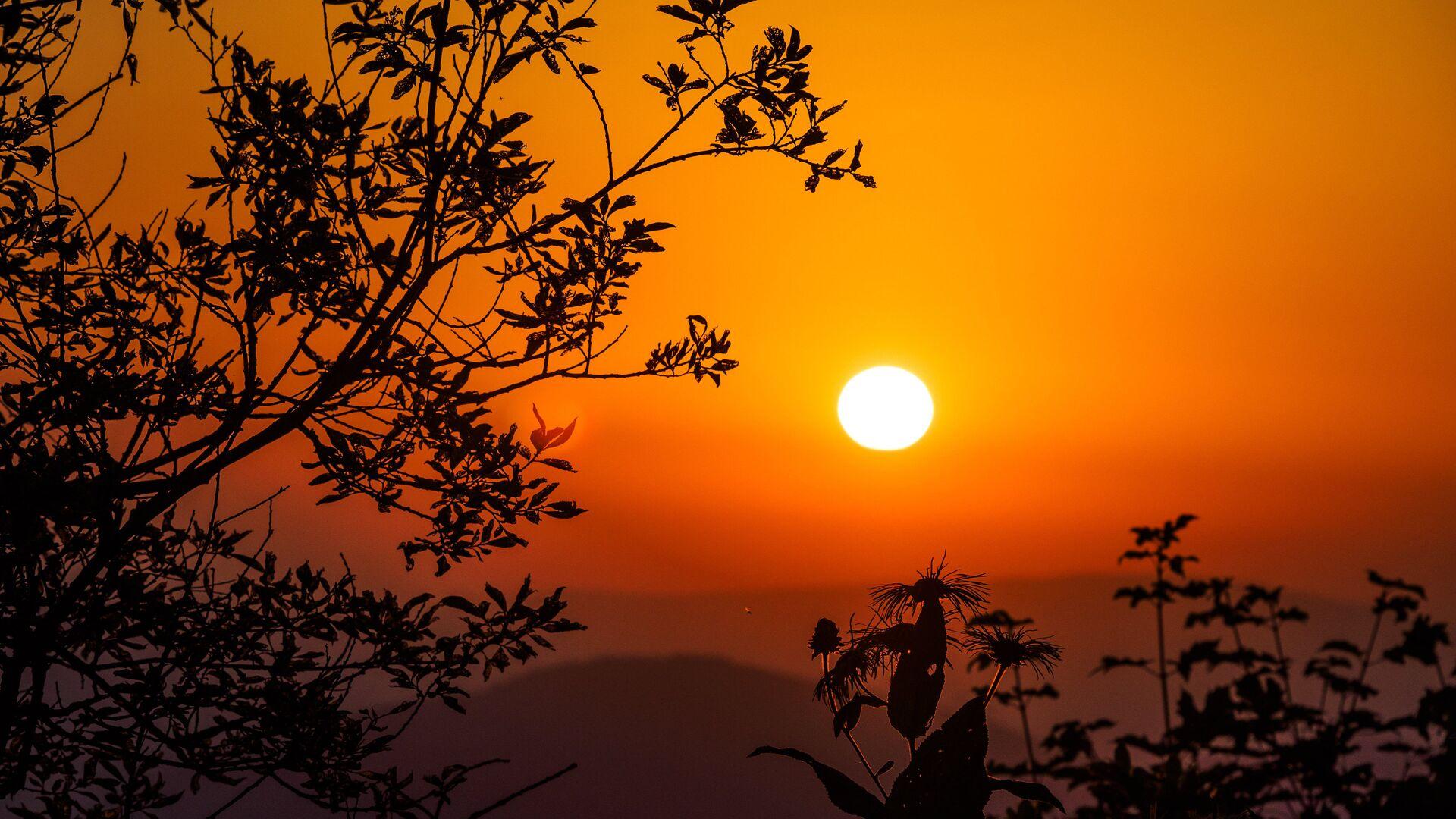 Ученый объяснил, какого цвета Солнце