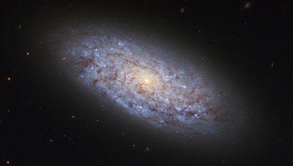 Галактика NGC 5949 в созвездии Дракона, нарушающая законы распределения темной материи