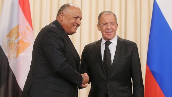 Министр иностранных дел РФ Сергей Лавров и министр иностранных дел Египта Самех Шукри. Архивное фото