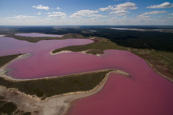 Горько-соленое Малиновое озеро в Михайловском районе Алтайского края
