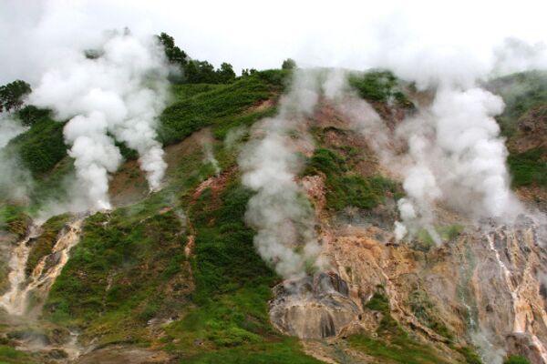 Природа камчатской Долины гейзеров залечивает раны от оползня