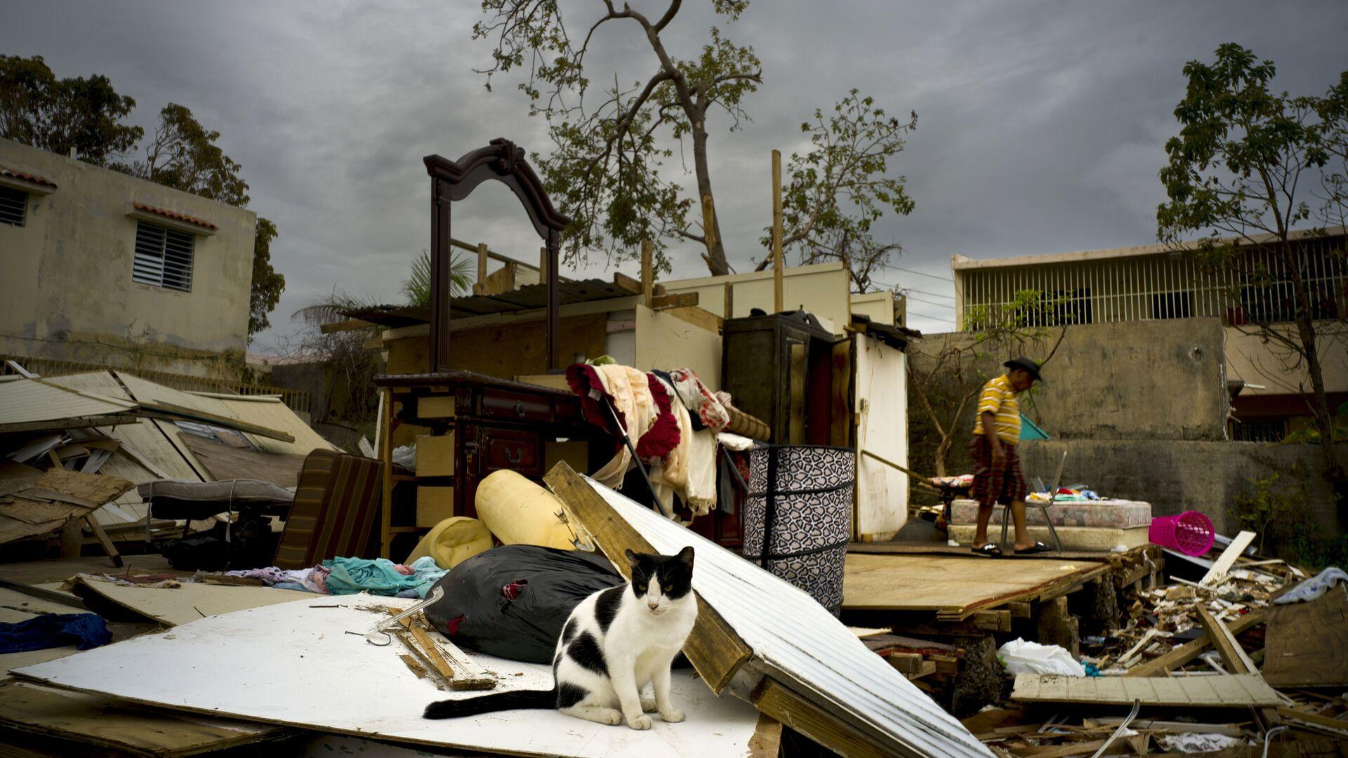 Последствия урагана Мария в Сан-Хуане, Пуэрто-Рико - РИА Новости, 1920, 13.07.2020