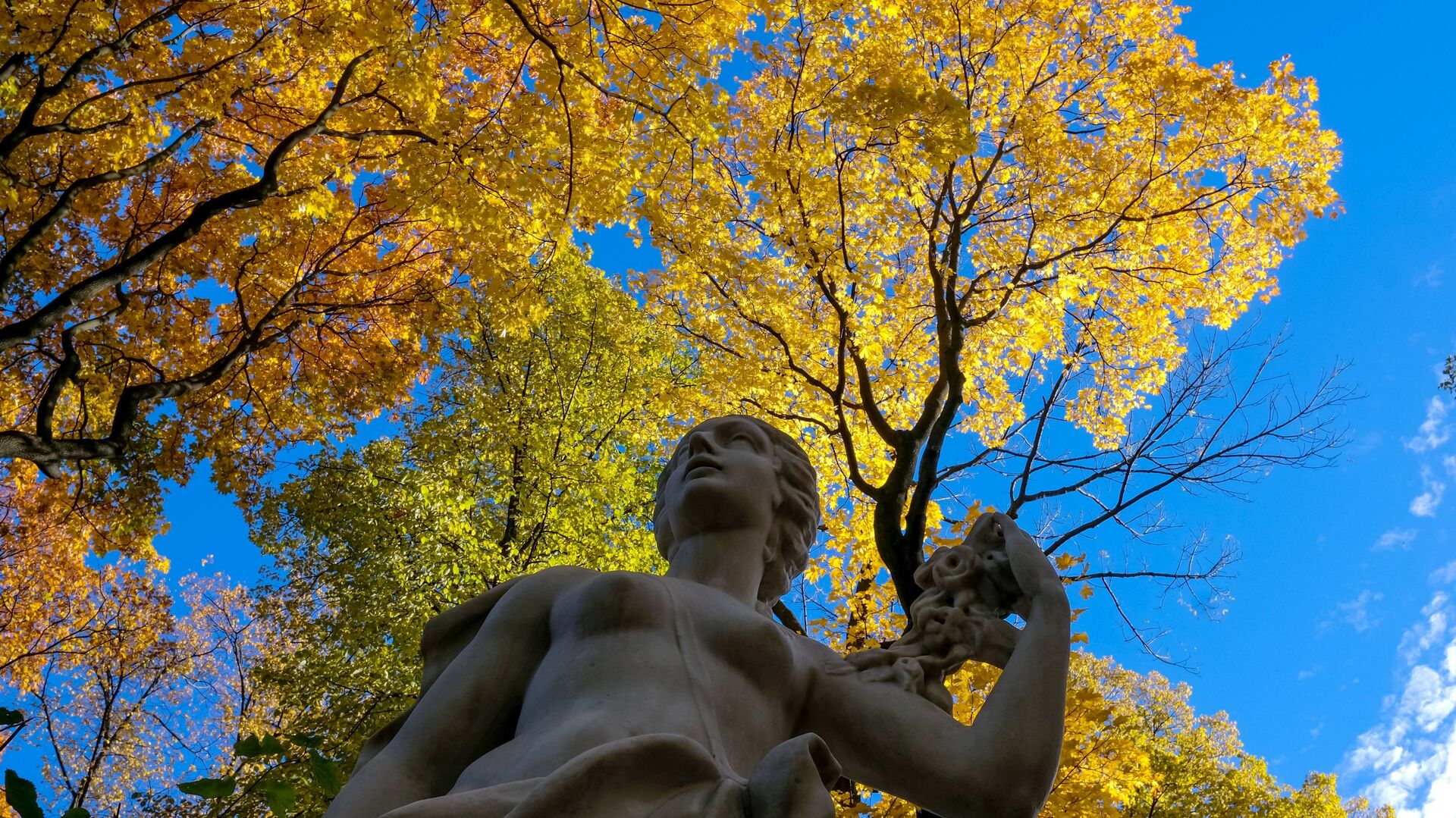 Статуя в Летнем саду в Санкт-Петербурге - РИА Новости, 1920, 01.12.2020
