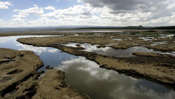 Озеро Накуру в Кении . Архивное фото