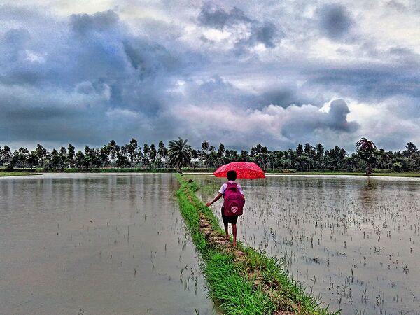 Anindya Phani. Journey to school