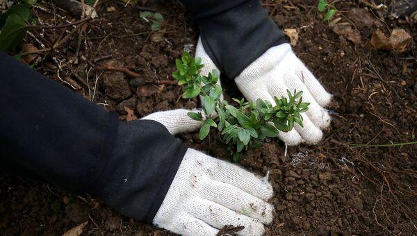 В Рязани прошла выставка лучших экологических добровольческих проектов