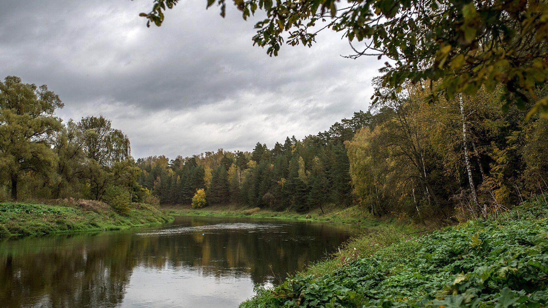 Особо охраняемый водный объект создан на севере Подмосковья - РИА Новости, 1920, 12.07.2021