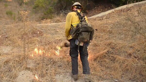 Пожарные в Калифорнии пустили встречный пал для борьбы с огнем