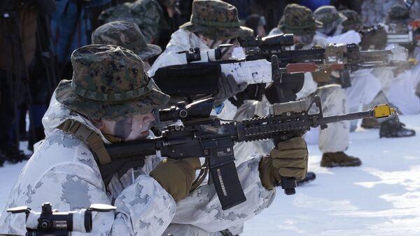 Южнокорейские и американские морские пехотинцы во время совместных военных зимних учений