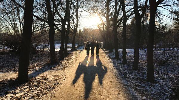 Отдыхающие гуляют в парке Серебряный бор в Москве