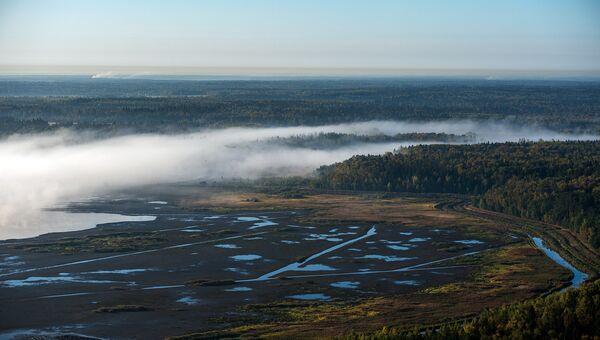 Уникальные экосистемы в Рузе и Одинцовском районе взяли под охрану