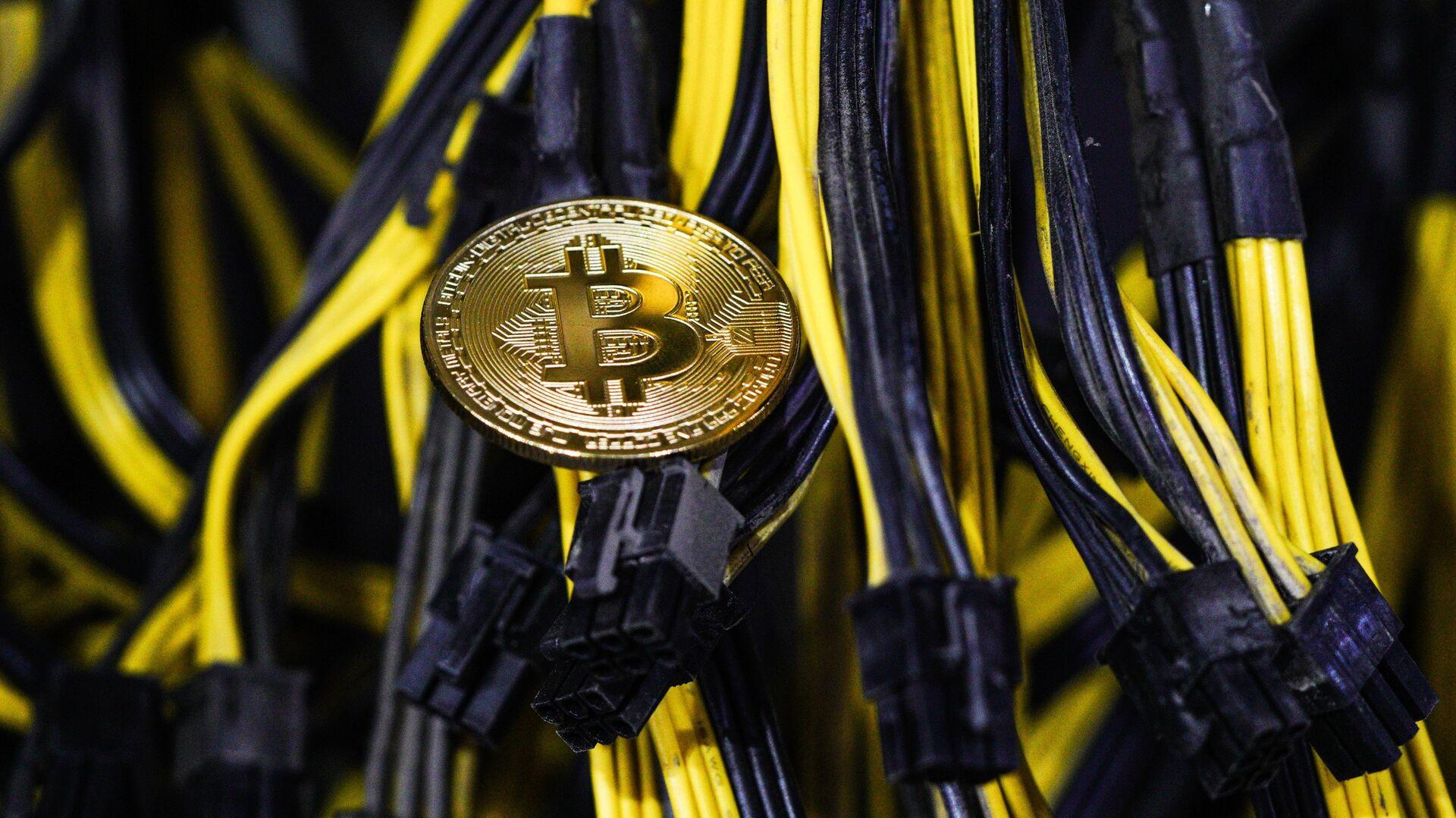 Названы характеристики стран, где могут признать биткоин