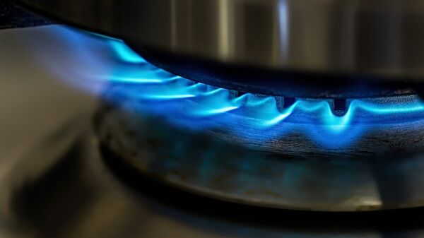 Пламя в газовой горелке. Архивное фото