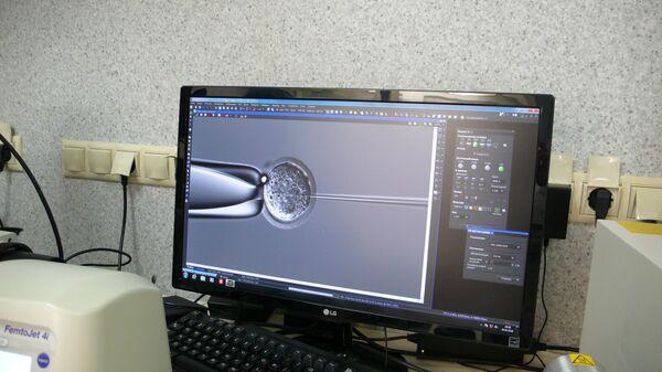 Яйцеклетку протыкают капилляром и вводят раствор РНК для геномного редактирования