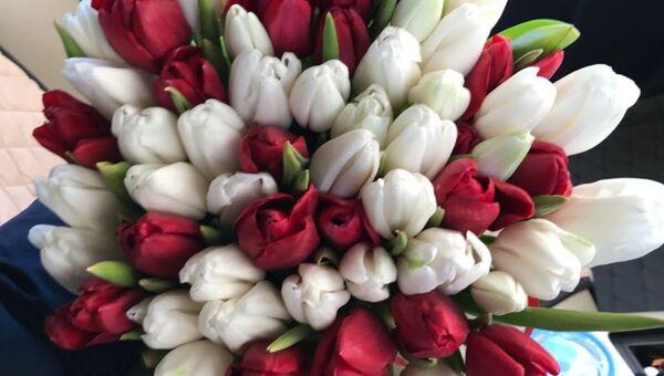 Тюльпаны, выращенные жительницей Благовещенска Викторией Куценко