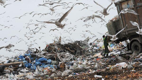 Выгрузка мусора на свалке бытовых отходов. Архивное фото