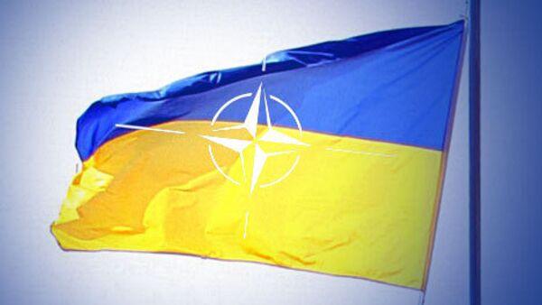 Кандидат на пост министра иностранных дел - нынешний посол Украины в США Олег Шамшур - надеется на скорейшее вступление страны в НАТО